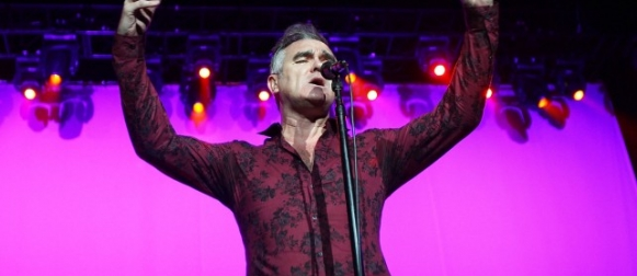 "PETA hace video animado con la canción ""Someday"" de Morrissey"